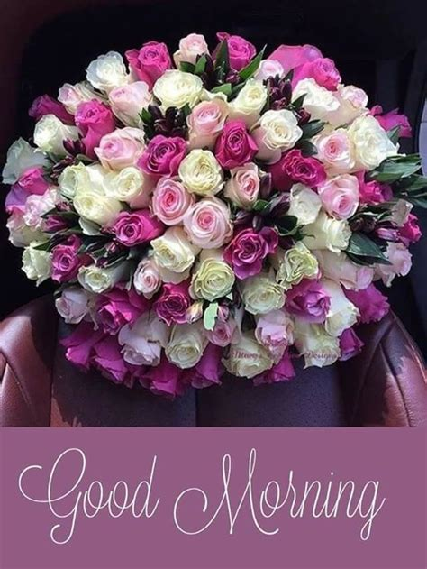 Pin by Nilesh Manore on Beautiful Blooms   Good morning