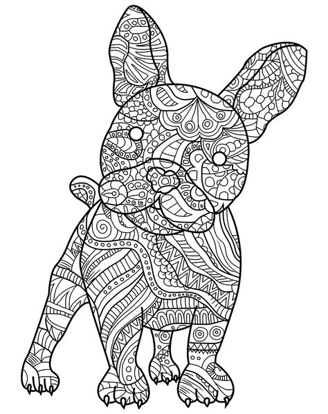 French Bulldog and its harmonious patterns - Dogs Adult