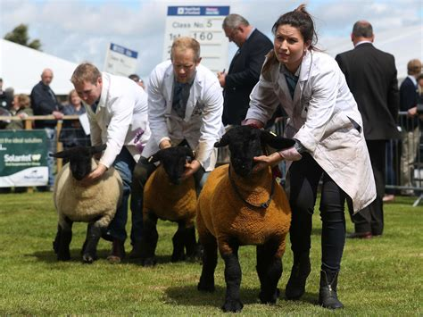 2021 Royal Highland Show Archives - Evening Telegraph